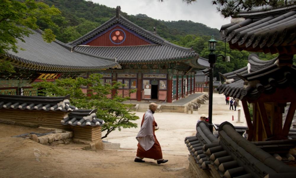 Gyeongsangbuk 9